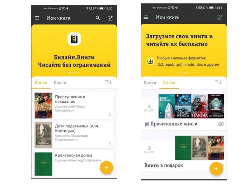 приложение Билайн Книги
